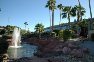 Lake Havasu City  (18)