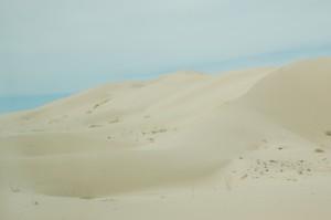 godt denne vej, ellers havde vi ikke oplevet at køre ind i en ørken.